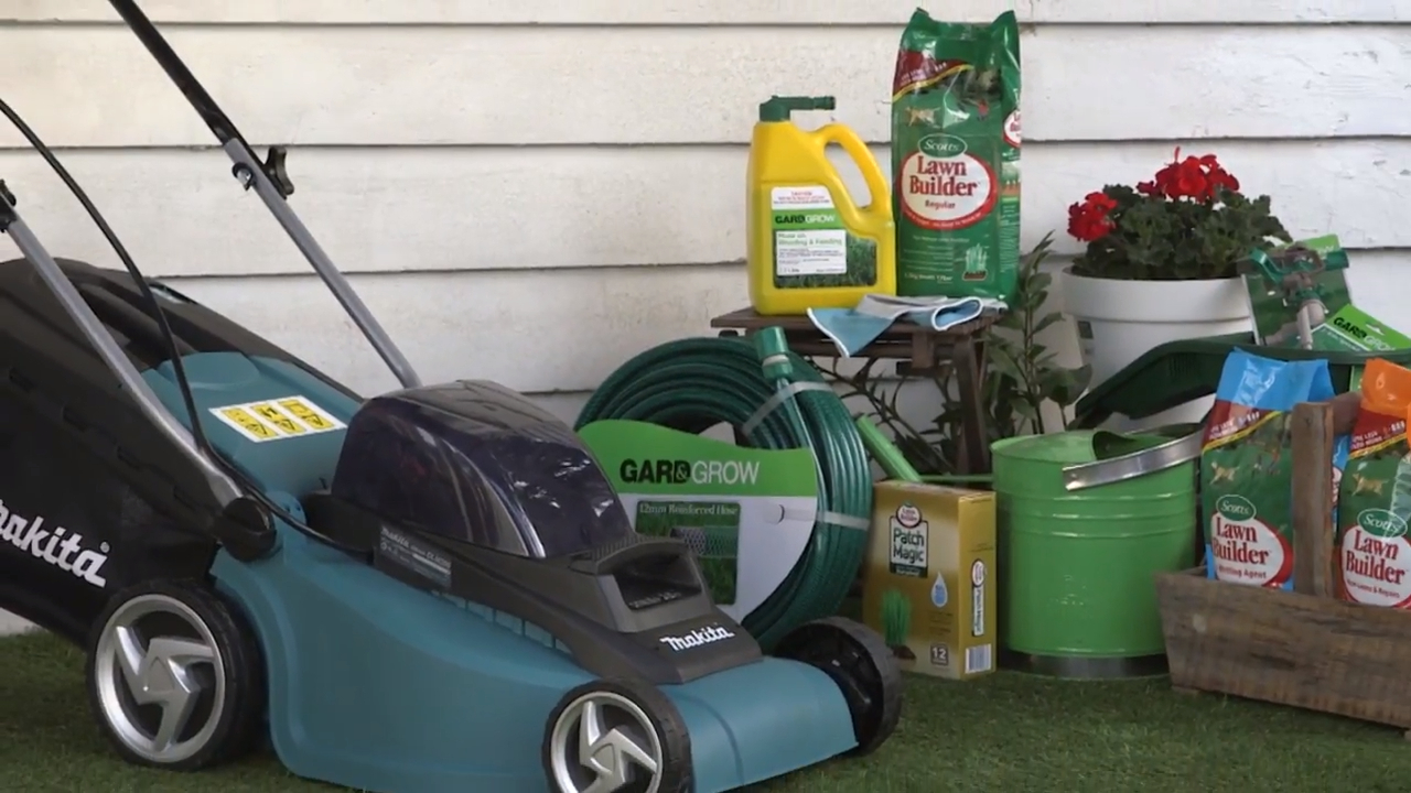 How to keep your lawn looking picture perfect
