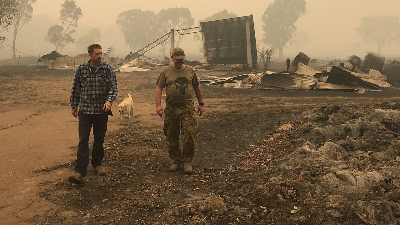 Dairy farmers forced to pour milk down drain due to bushfires