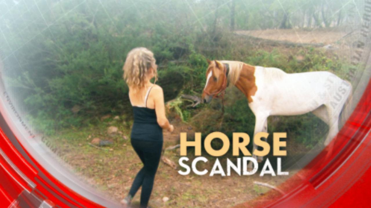 Horse scandal