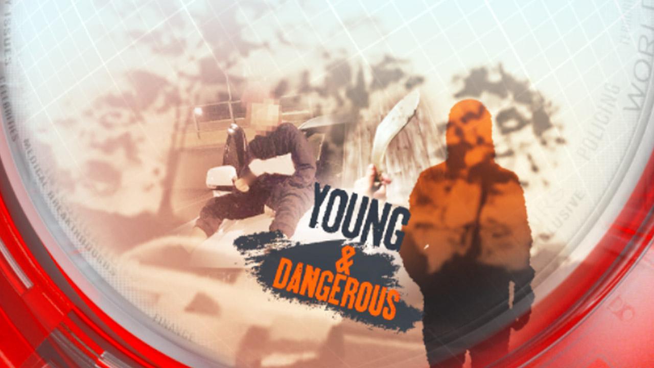 Young and dangerous: teen gangs