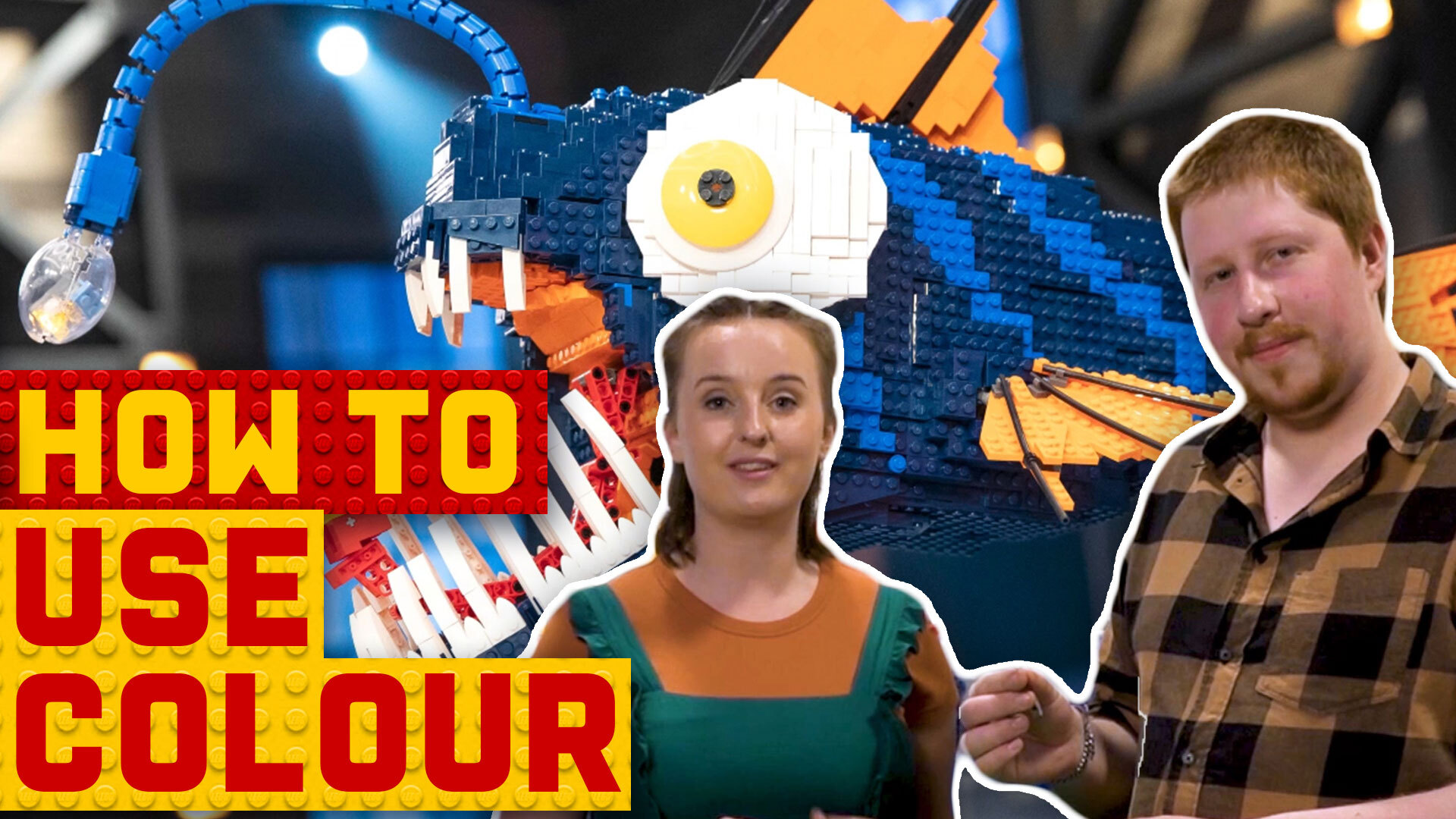 Tim and Dannii's tips for using colour in your LEGO build