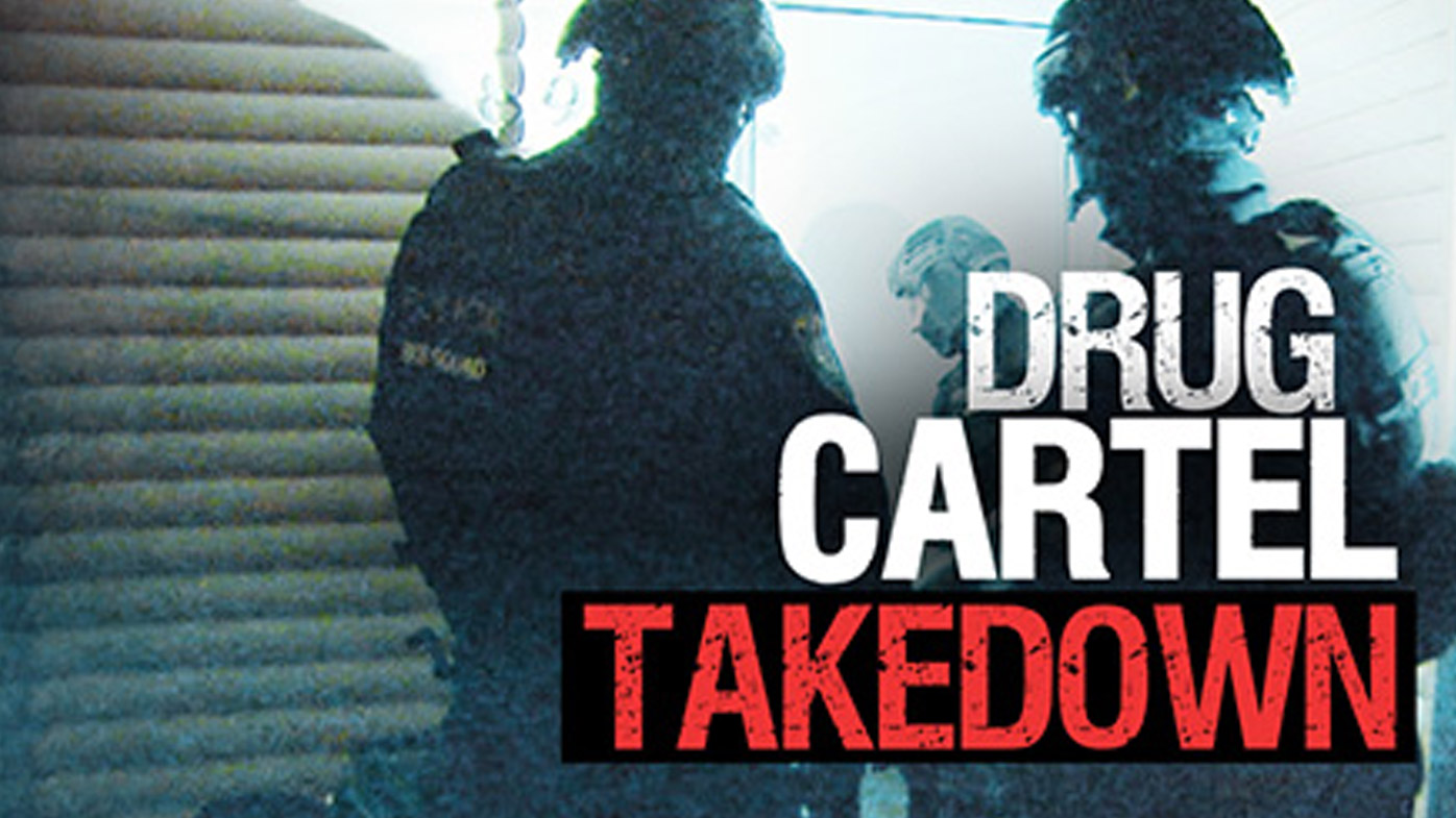 Drug cartel takedown