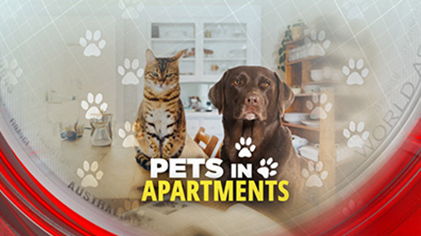 Pets in apartments