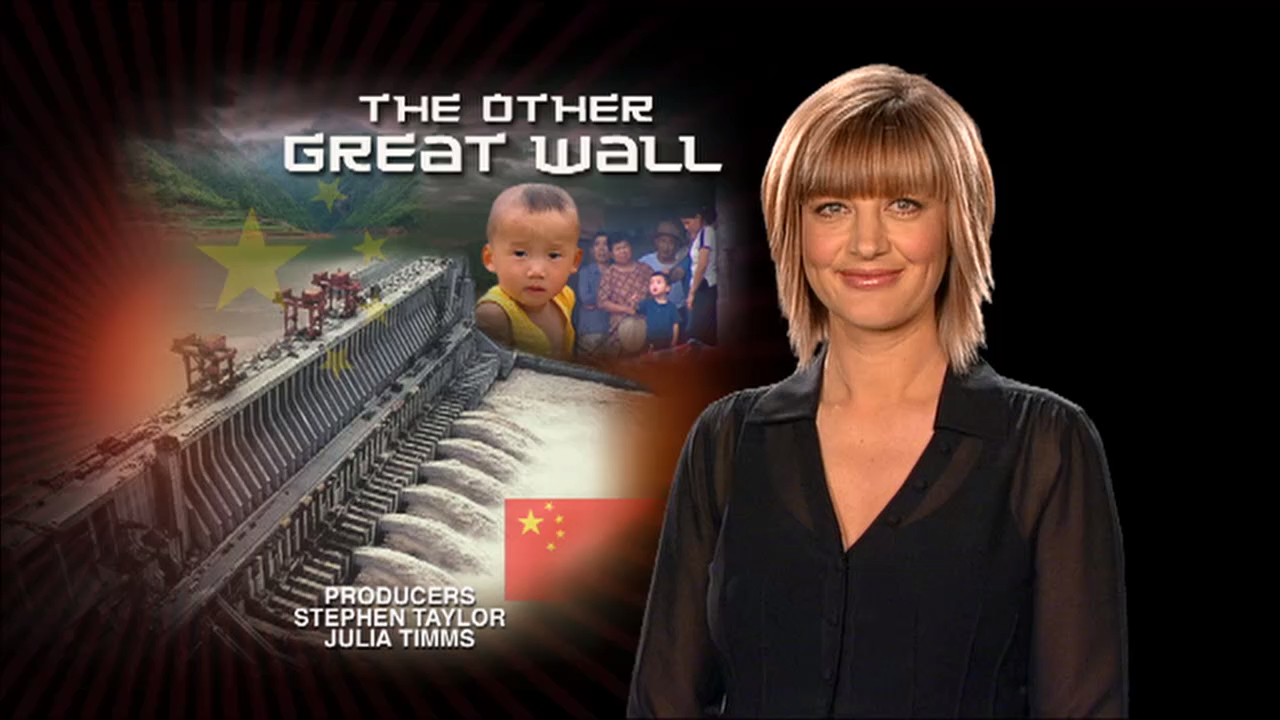 The Other Great Wall (2008)