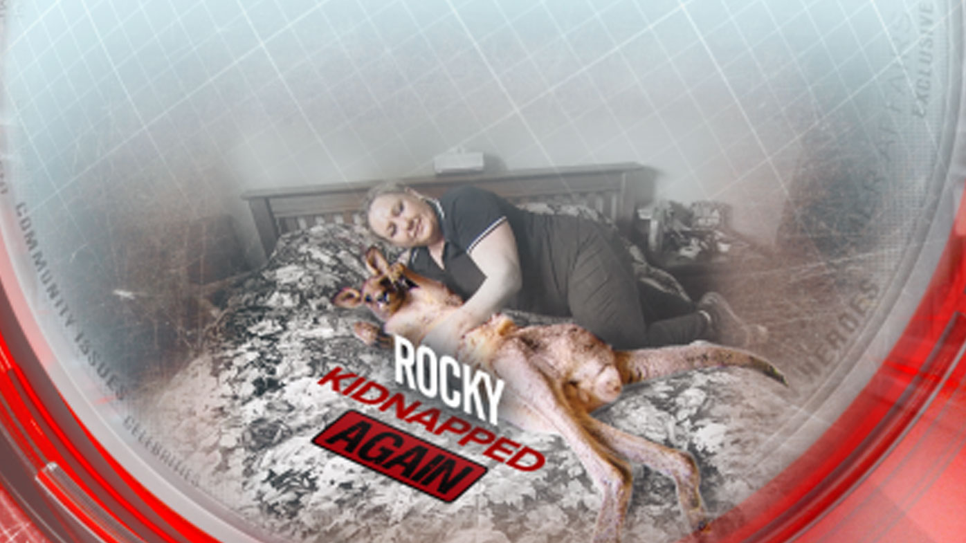 Rocky kidnapped again!