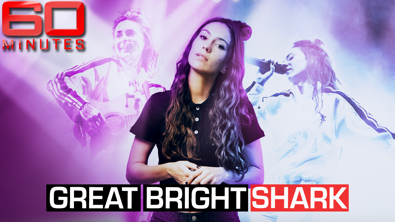 Great Bright Shark: Part one